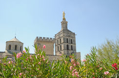 Avignon Cathedral Stock Image