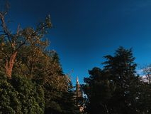 Avignon-Jungfrau- Mariastatue Lizenzfreies Stockfoto
