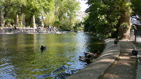 Avignon parc Arkivbild