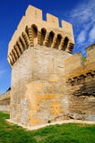 Avignon tower. Stock Images