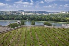 Avignons Brücke Lizenzfreies Stockbild