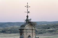 Avila Castilla y Leon, Spain: stork in the nest Royalty Free Stock Photo