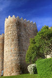 Avila Castle Walls Cityscape Castile Spain Royalty Free Stock Image