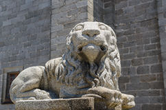 Avila lion Stock Photo
