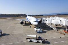 Avion d'All Nippon Airways (ANA) Photographie stock libre de droits
