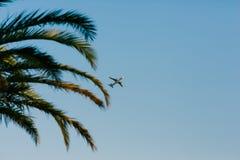 Avion dans le ciel Shooted de la terre Voler au-dessus de la paume Photographie stock libre de droits