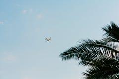 Avion dans le ciel Shooted de la terre Voler au-dessus de la paume Photographie stock