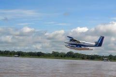 Avion dans les forêts Images stock