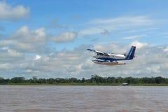Avion dans les forêts Photo libre de droits