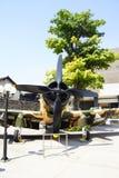 Avion de combat américain d'A1 Skyraider Images libres de droits