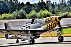 Avion de combat du mustang P-51 images libres de droits