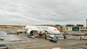 Avion de JAL de Japan Airlines à l'aéroport international de Tokyo Narita EN TEMPS QUASI RÉEL Photos libres de droits