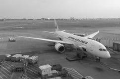 Avion de Japan Airlines à l'aéroport de Tan Son Nhat dans Saigon, Vietnam Photographie stock libre de droits