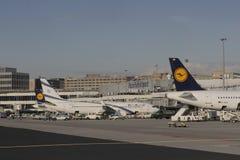 Avion de Lufthansa à l'aéroport de Francfort Images libres de droits