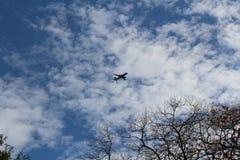 Avion en ciel avec le nuage et l'atterrissage sans congé d'arbre image libre de droits