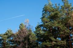 Avion en ciel bleu lumineux Photos stock