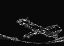Avion noir de l'eau Images libres de droits