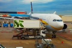 Avion près du terminal dans un aéroport Photos libres de droits