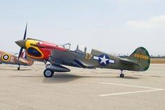 Aviones de combate de Curtiss P-40 Warhawks Imagen de archivo libre de regalías