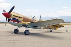 Aviones de combate de Curtiss P-40 Warhawks Foto de archivo libre de regalías