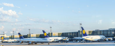 Aviones de Lufthansa en el terminal 1 en Francfort Imagen de archivo libre de regalías