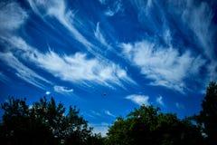 Aviones en el tiempo de verano del cielo azul fotos de archivo libres de regalías