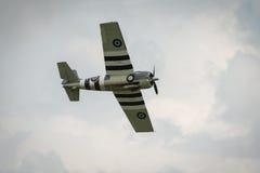 Aviones salvajes del vintage de Grumman (Martlet) Imágenes de archivo libres de regalías
