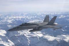 Avions à réaction de frelon de F/A-18C Image libre de droits