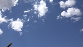 Avions, avions de passagers, avions, vol, nuages, nuageux clips vidéos