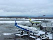 Avions débarquant à être prêt à l'aéroport de Chitose un jour neigeux Sapporo Image stock