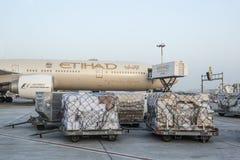 Avions de lignes aériennes d'Etihad Image stock