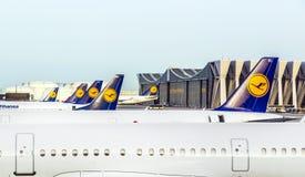 Avions de Lufthansa se tenant à Photos stock