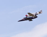 Avions de mustang et d'Albatros Photos libres de droits