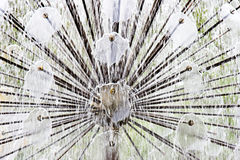 Avions à réaction de pulvérisation de fontaine de l'eau Image libre de droits