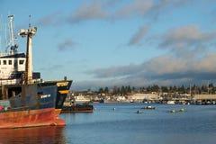 Aviron parmi des bateaux de pêche professionnelle Images libres de droits