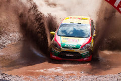 Avis Bosphorus Rally Stock Images