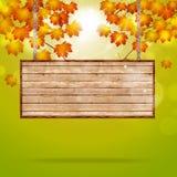 Avis en bois sur Autumn Background Photos stock