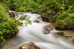 Avisio stream in Val di Fassa Stock Photography