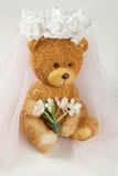 Aviso de la boda de la novia Fotos de archivo libres de regalías