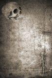 Aviso de la muerte del Grunge Fotografía de archivo