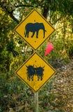 Aviso do elefante e do boi Imagens de Stock Royalty Free