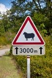 Aviso do sinal de tráfego dos carneiros na estrada Fotografia de Stock Royalty Free