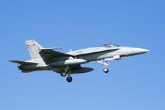 Avispón F-18 Imágenes de archivo libres de regalías