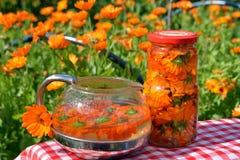 Avkok, te och avkok av blommor av calendulaen - vård- drink Royaltyfria Bilder