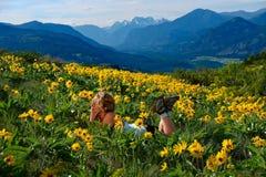 Avkopplad kvinna som ner ligger på ängar med gula glade blommor royaltyfri fotografi