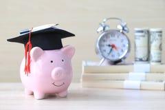 Avläggande av examenhatt på den blåa spargrisen med bunten av myntpengar på träbakgrund, sparande pengar för utbildningsbegrepp royaltyfri bild