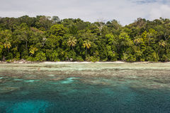 Avlägsen ö i Melanesia arkivfoto