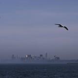 Avlägsen Chicago horisont med seagulls och vatten Royaltyfri Bild