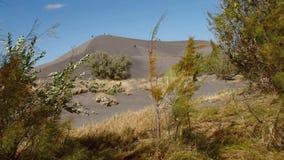 Avlägsen idaho 38 för Bruneau sanddyn stor dyn lager videofilmer