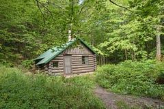 Avlägsen kabin i skogen Arkivbilder